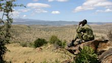 The outlook is bleak for the guardians of Africa's wildlife – here's how you can help