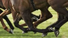 Punters take payday loans to bet on the Grand National