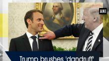 Trump brushes 'dandruff' off 'perfect' Macron