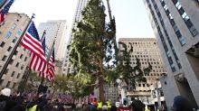Eine Metapher fürs Jahr 2020? Der Weihnachtsbaum am Rockefeller Center sieht anders aus als sonst