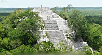 消失2百年再現蹤 雨林1棟撼全球