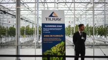 Tilray CEO: Fortune 500 companies are becoming less afraid of the pot sector