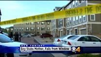 Boy Stabs Mother, Falls From 3rd Story Window