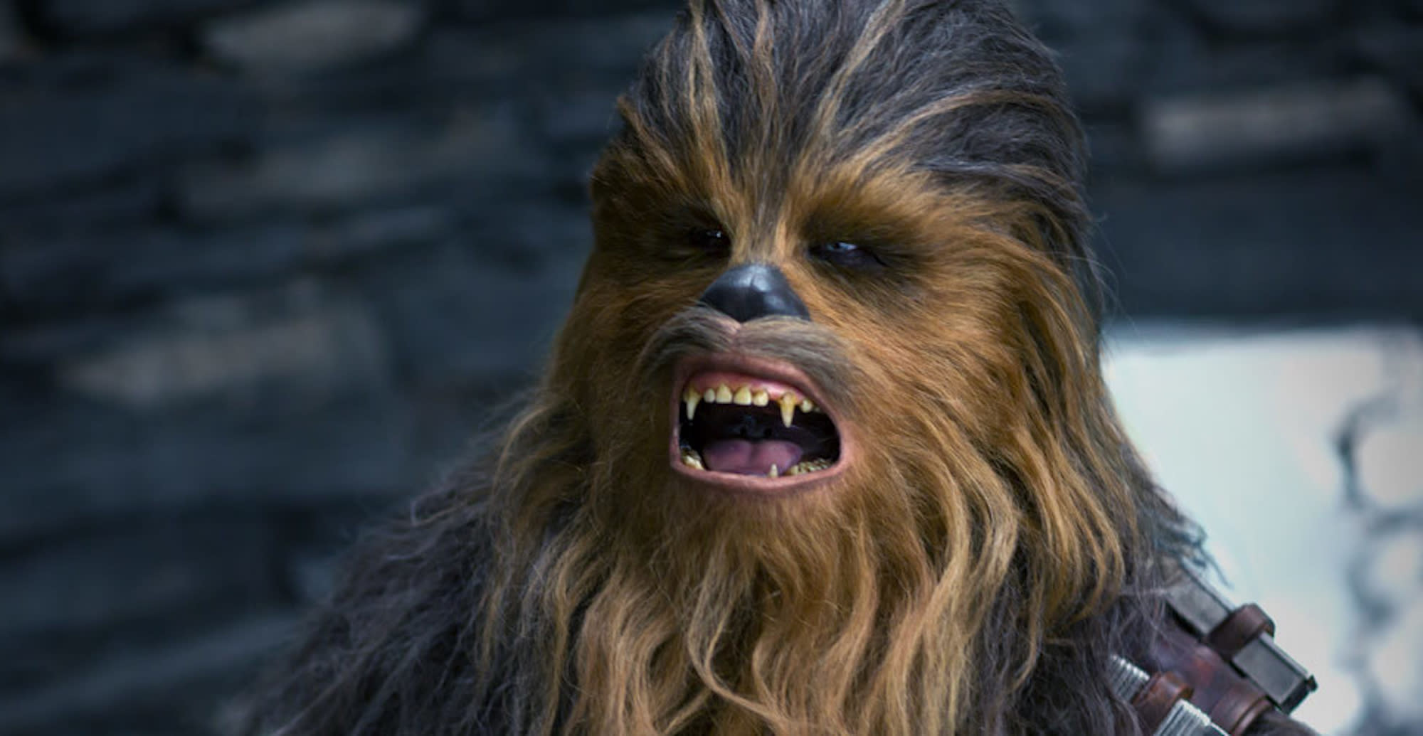 Watch Chewbacca answer burning fan questions about Han Solo, Rey, his missing medal, and more