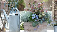 Weekend project: plant up some pretty pots for winter