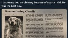 South Carolina woman's heartwarming obituary for beloved golden retriever goes viral