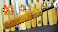 Bamboo a 'batsman's dream': UK uni study