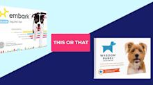 We Compared Two Dog DNA Test Kits. Here's What We Found.