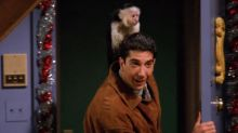 Ross Geller's monkey from Friends set to make TV comeback