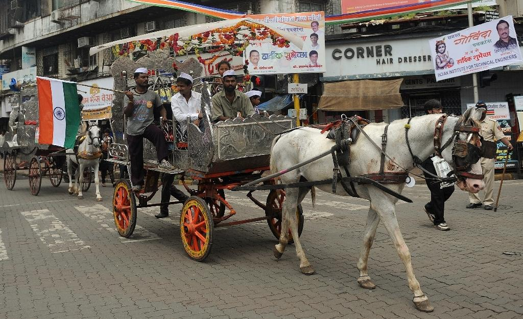 Mumbai's ornate horse-drawn carriages are nearing the end of the road after a court in the Indian city ruled them illegal, saying owners must wind up operations within a year (AFP Photo/Punit Paranjpe)