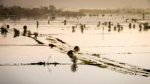 Flood defence plans heavily favour London and south-east