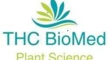 THC BioMed Releases Year End Results