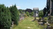 Cangrejos mutantes y autoclonantes invaden un cementerio en Bélgica