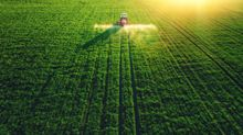 Another Year of Plenty Awaits the Grain Market