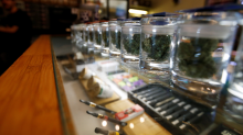 Colorado Pot Expected to Make Record-Breaking Sales Despite Influx of New Legal Marijuana States