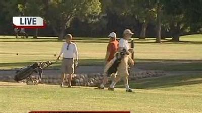 Dads Spend Relaxing Holiday On The Green