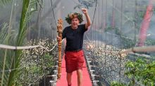 I'm A Celebrity 2018 final review: Tedious and unbearably predictable – Harry Redknapp makes for a fitting winner