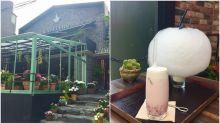 【弘大花草系咖啡廳】超好拍花房咖啡廳,棉花糖拿鐵的甜蜜下午茶時間!