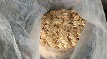 Lavaban preservativos usados y los revendían: confiscados 345.000 en Vietnam