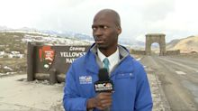 Video Of Reporter's Hilarious Reaction To Approaching Bison Herd Goes Viral
