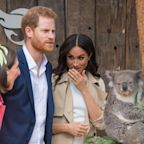 Meghan Markle and Prince Harry Tried (and Failed) to Get a Koala's Attention in Australia