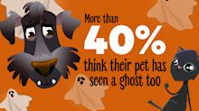 Groupon Halloween Survey: More than 60 Percent of People Have Seen a Ghost