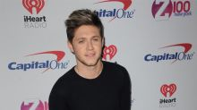 Niall Horan 'really into' Hailee Steinfeld