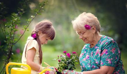 日本精神科醫師教你:富足退休怎麼做?
