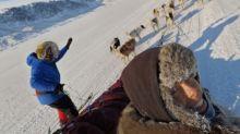4 weeks, 500km, and 1 dog team: Iqaluit mushers complete epic spring trek