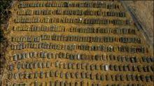 Inzwischen mehr als 80.000 Corona-Tote in Brasilien gezählt