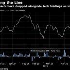 Cathie Wood's Misery Mounts as ARKK Assets Dip Below $20 Billion