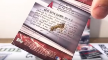 A bug got trapped in a Mike Trout baseball card because even bugs love him