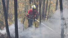 Portogallo, venti feriti negli incendi, 1.800 pompieri all'opera