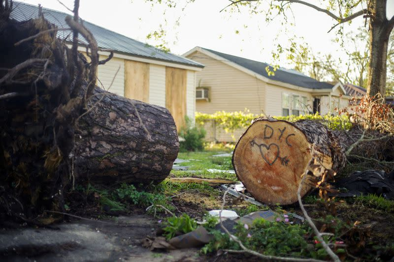 Trees and branches are seen after Hurricane Delta in Lake Charles