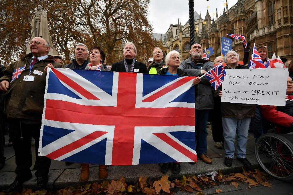 Britain voted to leave the European Union in a referendum in June 2016 (AFP Photo/BEN STANSALL)