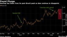 Pound Bear Targets Slide to $1.32 as BOE's Hiking Window Closes