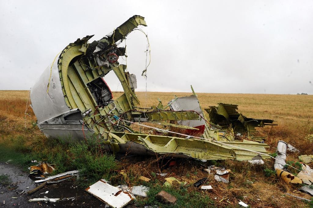 Malaysia Airlines Flight MH17 was shot down over a rebel-held area of eastern Ukraine in July 2014