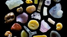 Sand Looks Unbelievably Cool In Microscopic Photography