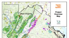 Dominion CEO: Stop work order may increase Atlantic Coast Pipeline cost to $7B