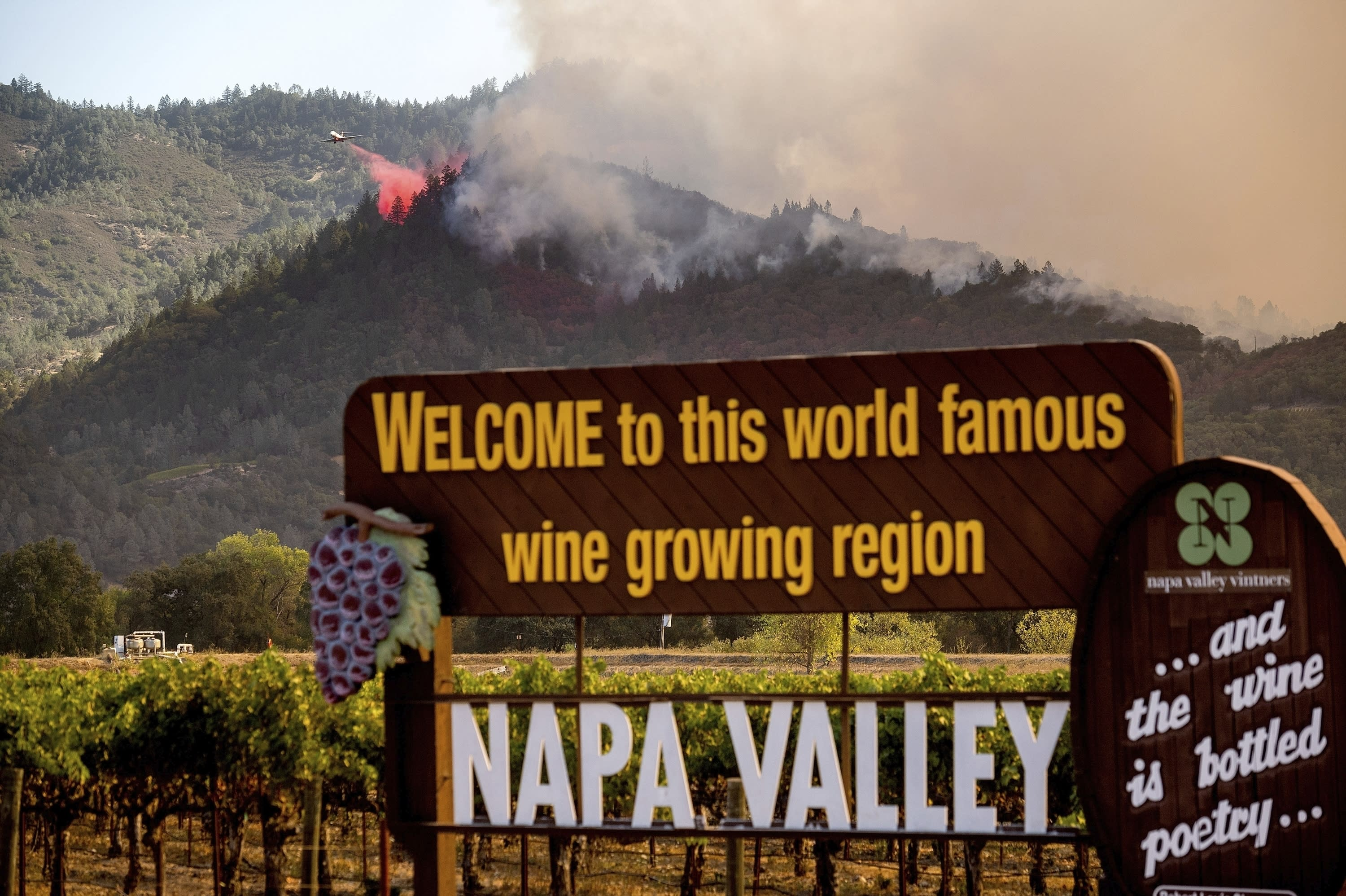 California wine country adapting to annual wildfire threat