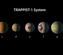NASA discovered 7 Earth-sized planets and everyone made the same Trump jokes