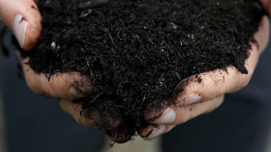 Washington is first state to legalize human composting