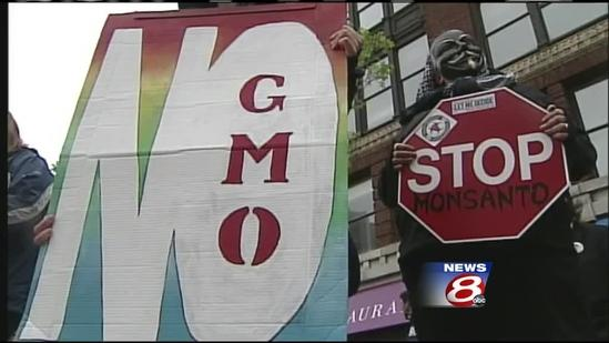 Mainers protest against Monsanto