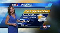 Cindy Fitzgibbon's Wednesday afternoon Boston area forecast