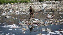 Nature's 'alarming' decline threatens food, water, energy: U.N.