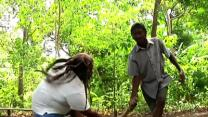 Art of Haitian Machete Fighting Revived