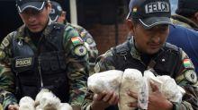 Bolivia records 10% increase in coca cultivation in 2019: UN