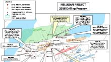 IAMGOLD Reports Further Positive Results from Its 2018 Drilling Program at the Nelligan Gold Project, Quebec