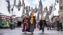 Is the Wizarding World of Harry Potter worth the steep prices?