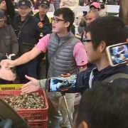 韓國瑜清晨5時視察漁市 網驚:好早起!韓總回來了